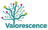 Valorescence